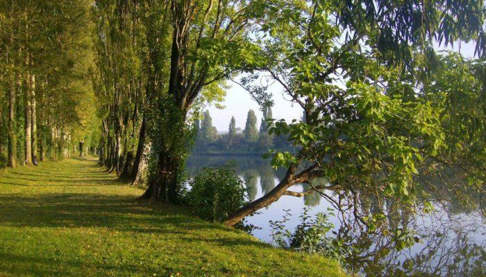 L'étang de la Salle