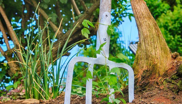 «Plantez le décor», tout un programme en faveur de l'environnement : Inscription jusqu'au 30 juin