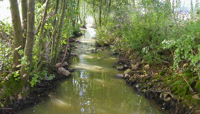 [SIVY] – Consultation sur les milieux aquatiques du 22 juin au 18 juillet