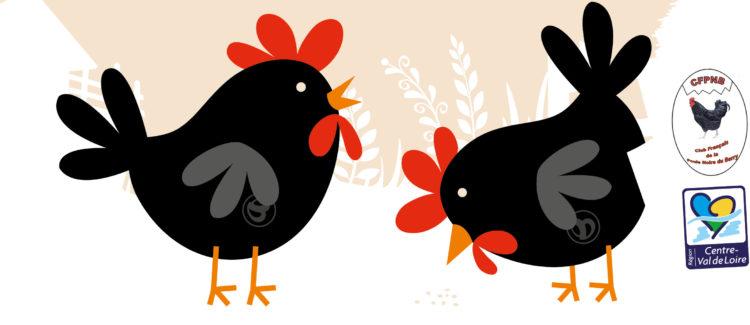 Poules noires 2 ème édition